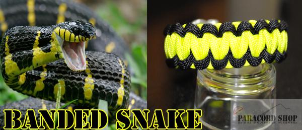 Snake Banded Paracord 550 Bracelet